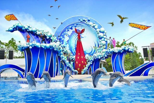golfinhos-seaworld-1.jpg