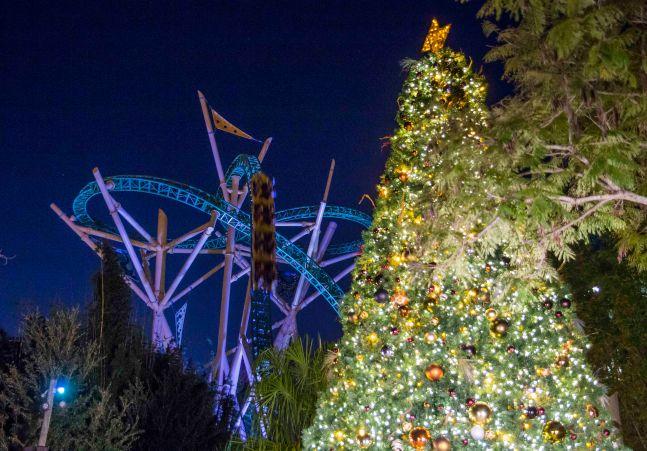 Busch Gardens Tampa Bay Christmas Town Cheetah Hunt Tree