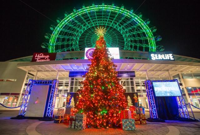 Natal na Orlando eye