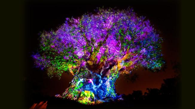 tree-of-life-04